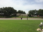 The Grassy Knoll, from which some theorize that a second shooter may have been involved.