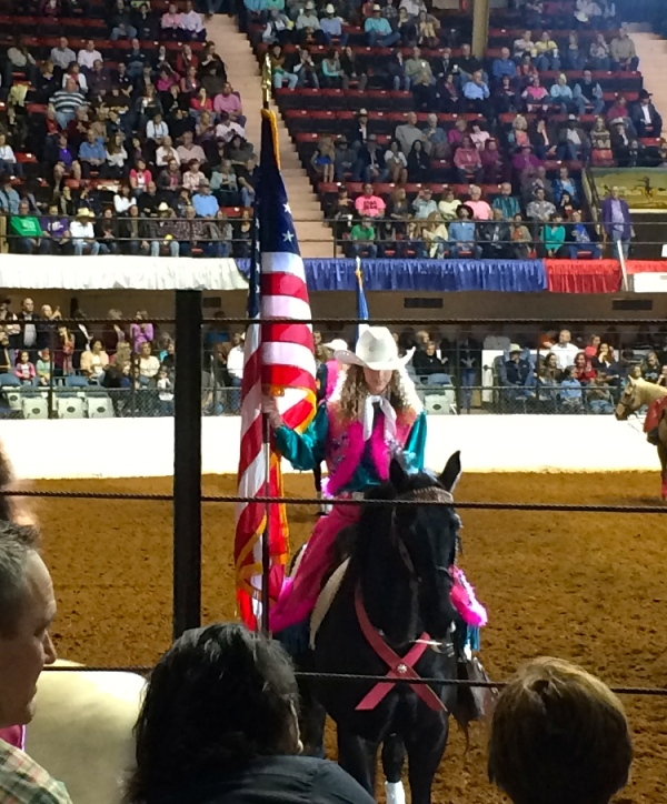 Our flag at FWSSR, 1.27.2015