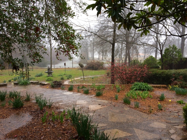 We welcome the rain here at Lake Tyler 3.9.2015